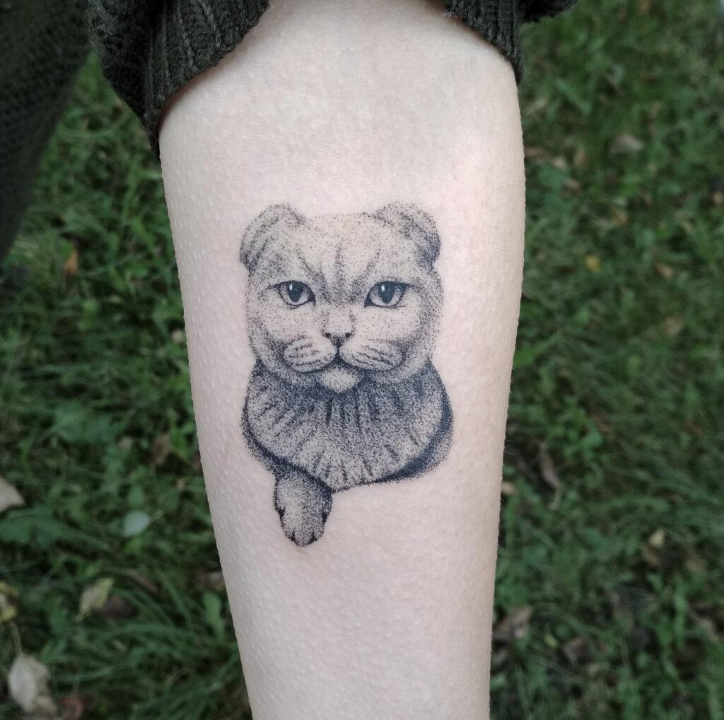 тату мистер кот от мастера Юли - ТатуКлубБай г. Минск.